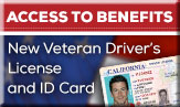 veteran-drivers-license-and-id