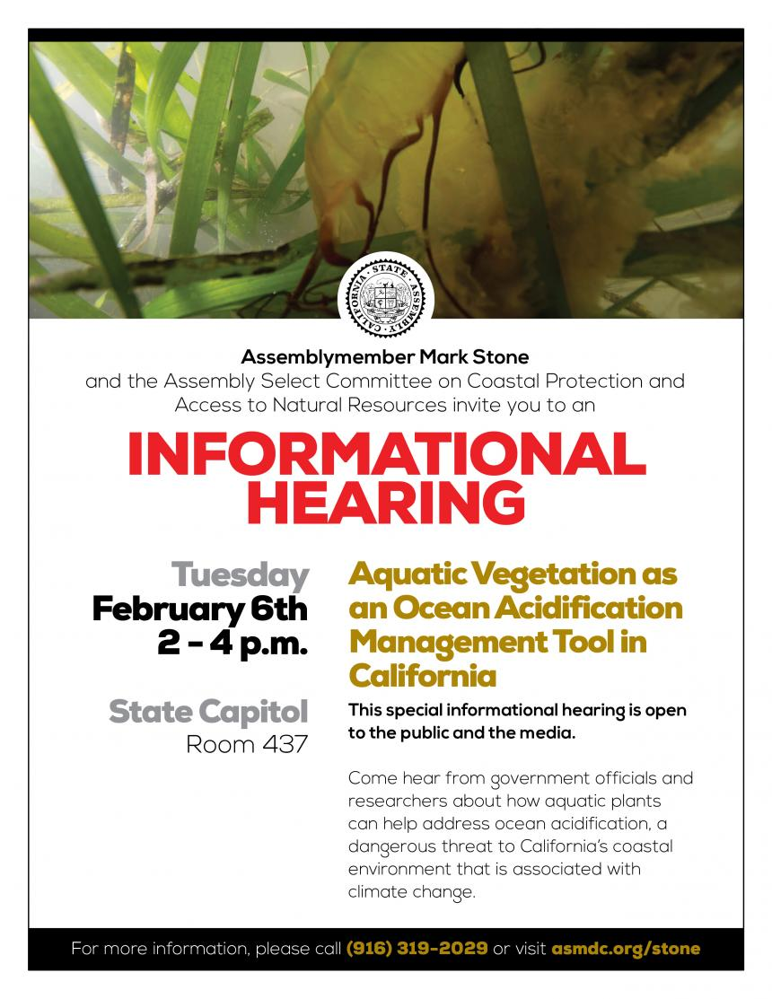 Coastal Access Informational Hearing Flyer - text below